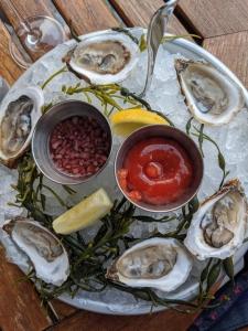 Oysters in Utah